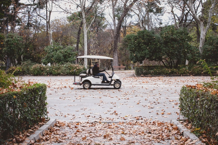 electric golf buggies for sale